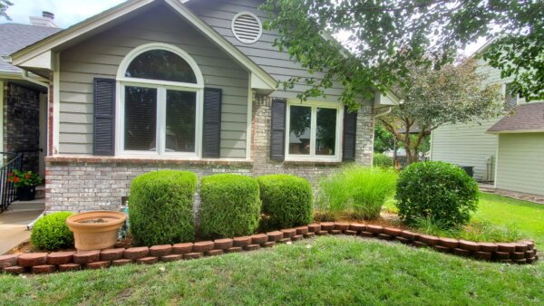 lawn clean up services